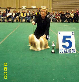 Lhasa Apso Dream on win at Eindhoven dogshow