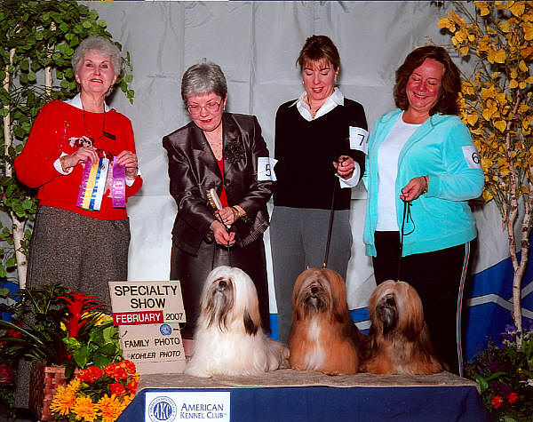 Lhasa apso showdogs winners