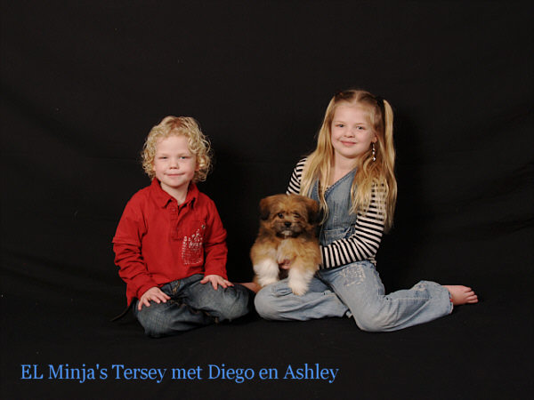 lhasa apso pup with children