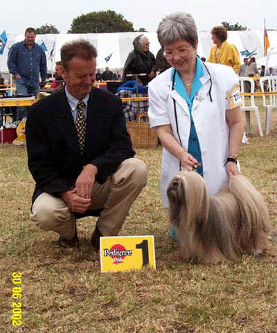 Lhasa Apso win in Uden, Holland