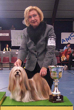 Lhasa Apso Topwinning Champion EL Minja's Dream On the proud mother of 1 litter of Lhasa Apso puppies